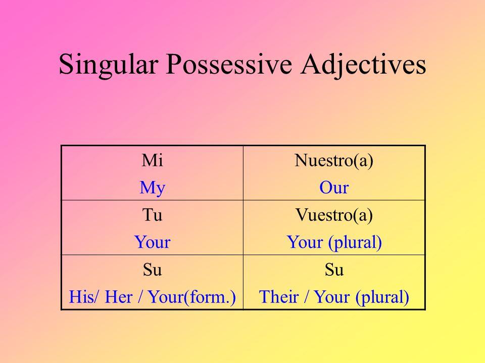 Singular Possessive Adjectives MiNuestro(a) TuVuestro(a) Su