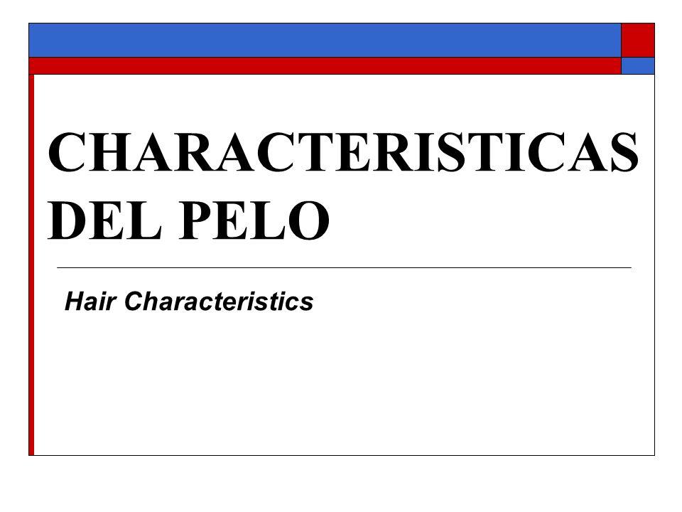 CHARACTERISTICAS DEL PELO Hair Characteristics