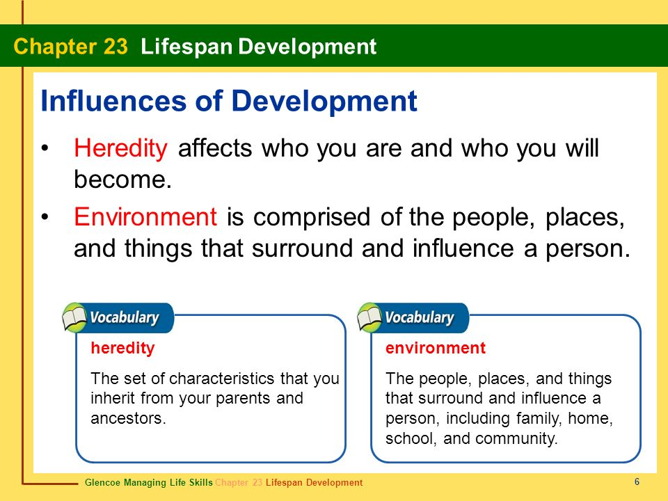 Glencoe Managing Life Skills Chapter 23 Lifespan Development Chapter 23 Lifespan Development 6 Influences of Development Heredity affects who you are and who you will become.