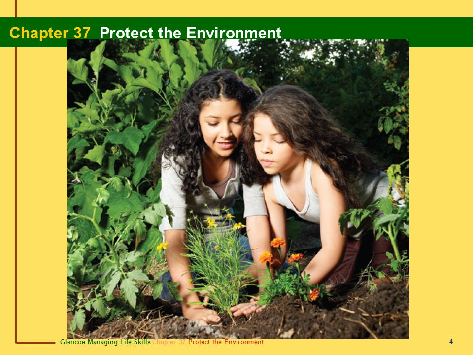 Glencoe Managing Life Skills Chapter 37 Protect the Environment Chapter 37 Protect the Environment 25 nonrenewable resources recursos no renovables Resources that cannot be replaced once they are used.