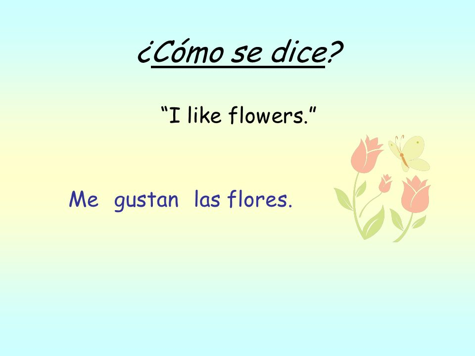 ¿Cómo se dice? I like flowers. las flores.gustanMe