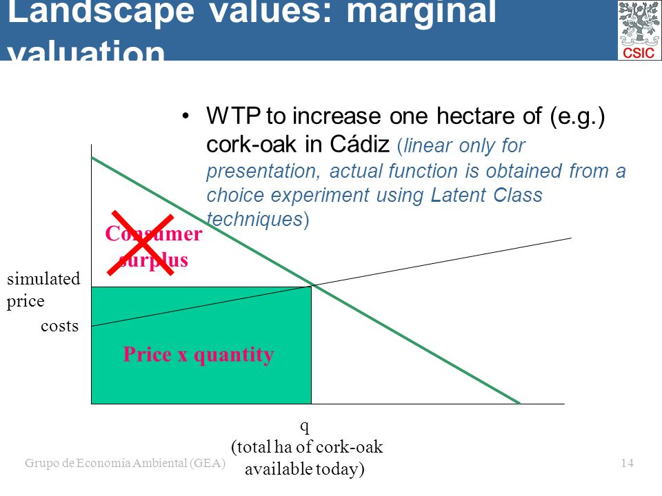 Grupo de Economía Ambiental (GEA)14 Landscape values: marginal valuation WTP to increase one hectare of (e.g.) cork-oak in Cádiz (linear only for presentation, actual function is obtained from a choice experiment using Latent Class techniques) q (total ha of cork-oak available today) simulated price Consumer surplus Price x quantity costs