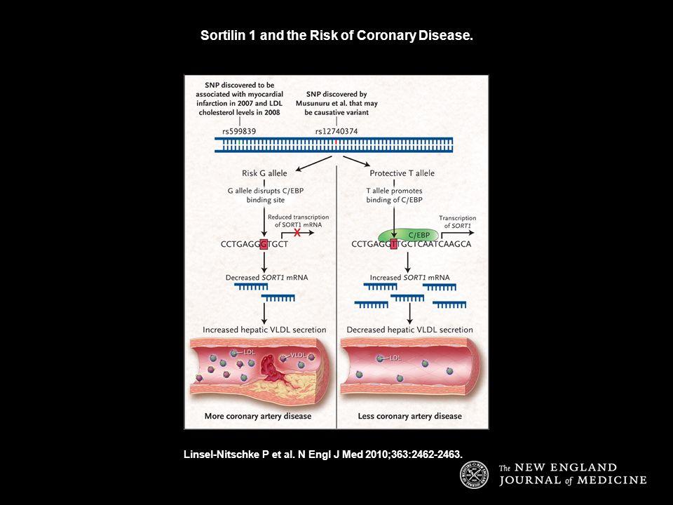 Sortilin 1 and the Risk of Coronary Disease. Linsel-Nitschke P et al. N Engl J Med 2010;363:2462-2463.