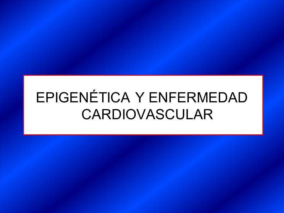 EPIGENÉTICA Y ENFERMEDAD CARDIOVASCULAR