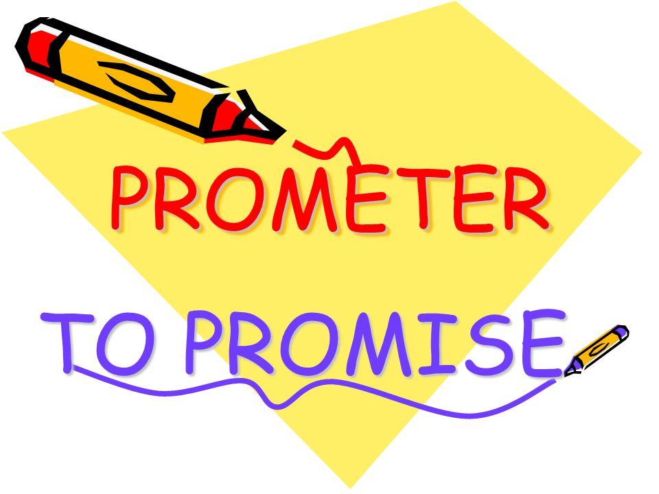 PROMETERPROMETER TO PROMISE