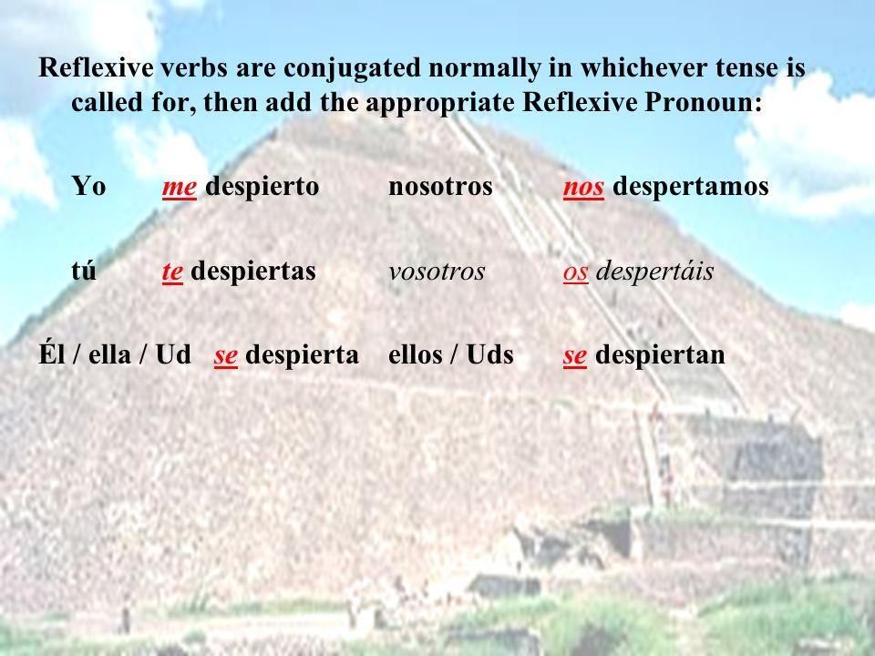 Reflexive verbs are conjugated normally in whichever tense is called for, then add the appropriate Reflexive Pronoun: Yo me despiertonosotrosnos despertamos tú te despiertasvosotrosos despertáis Él / ella / Ud se despiertaellos / Udsse despiertan