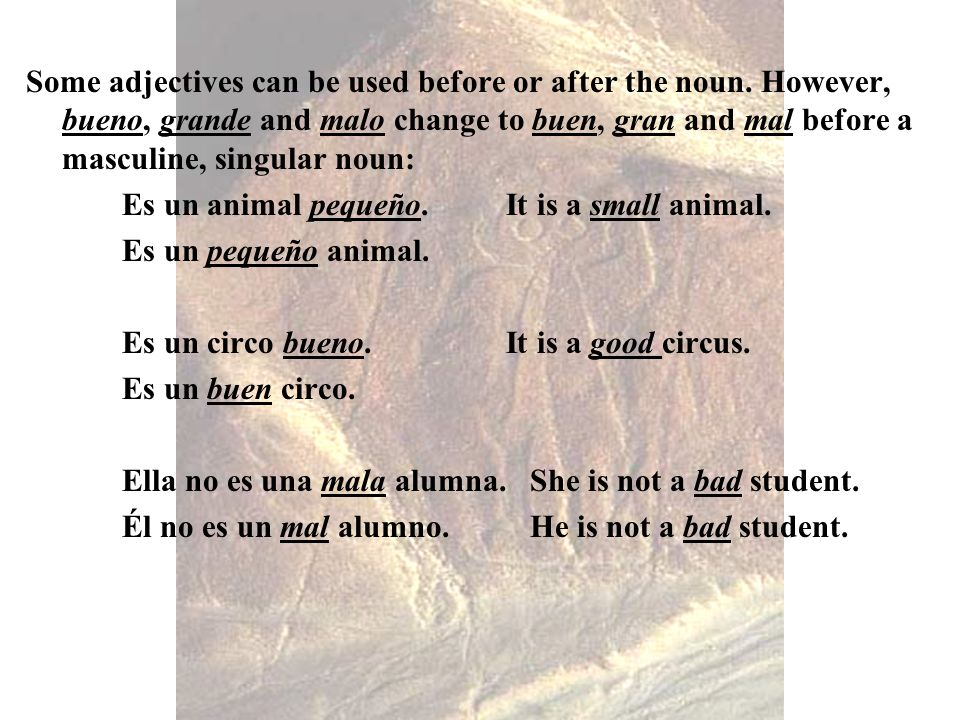 Some adjectives can be used before or after the noun. However, bueno, grande and malo change to buen, gran and mal before a masculine, singular noun:
