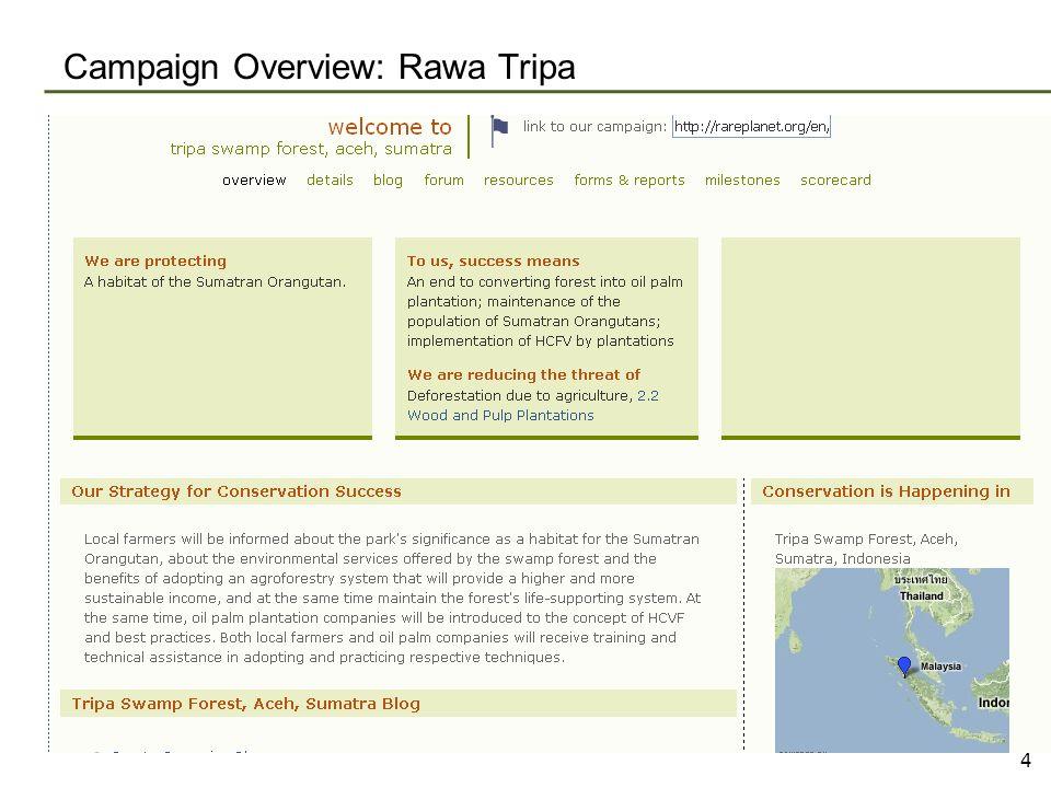 Campaign Overview: Rawa Tripa 4