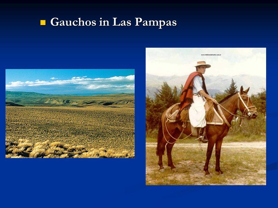 Gauchos in Las Pampas Gauchos in Las Pampas