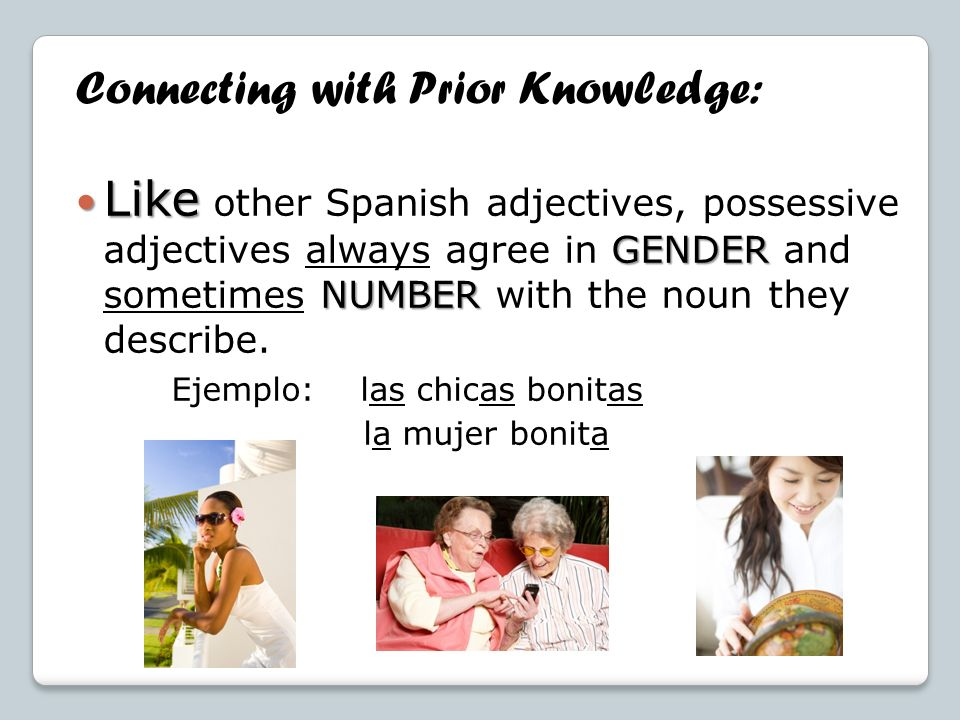 Connecting with Prior Knowledge: Like GENDER NUMBER Like other Spanish adjectives, possessive adjectives always agree in GENDER and sometimes NUMBER w
