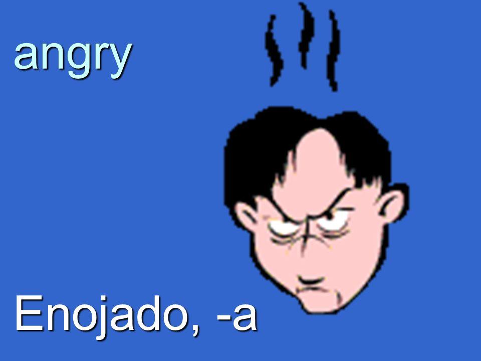 angry Enojado, -a