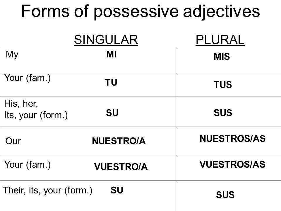 Practica: Provide the possessive adjectives My Your (fam.) His,her, its,your (form.) Our Your (fam.) Their,its,your (form.) SINGULARPLURAL