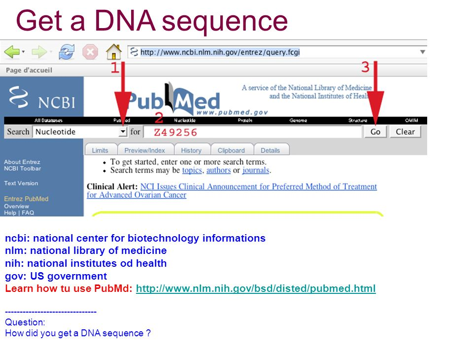 Get a DNA sequence ncbi: national center for biotechnology informations nlm: national library of medicine nih: national institutes od health gov: US government Learn how tu use PubMd: http://www.nlm.nih.gov/bsd/disted/pubmed.htmlhttp://www.nlm.nih.gov/bsd/disted/pubmed.html ------------------------------- Question: How did you get a DNA sequence