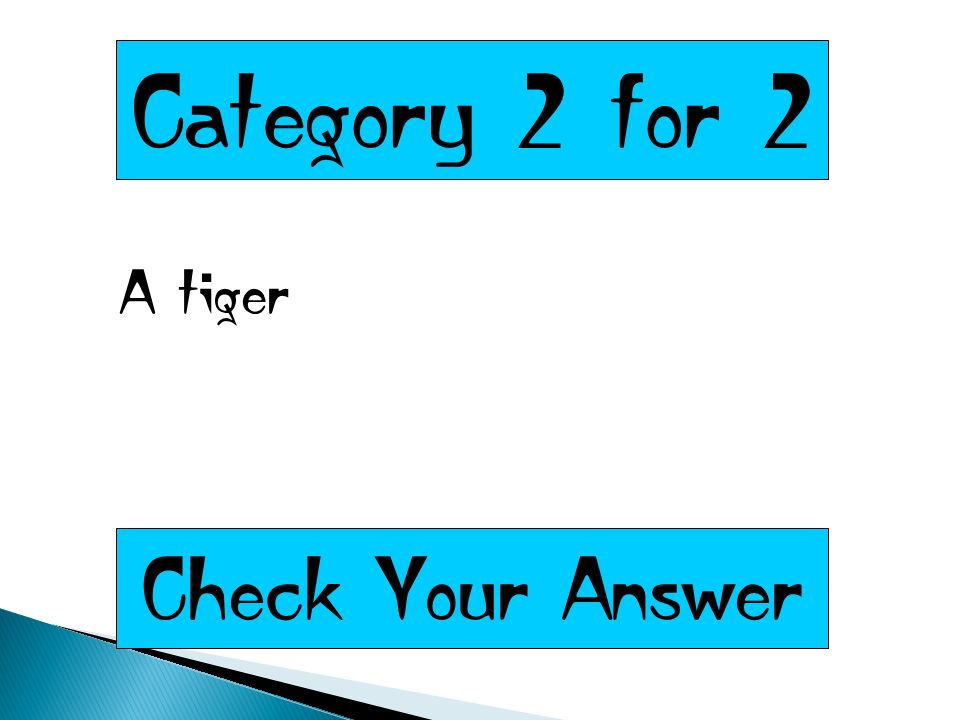 Category 2 for 2 A tiger Check Your Answer