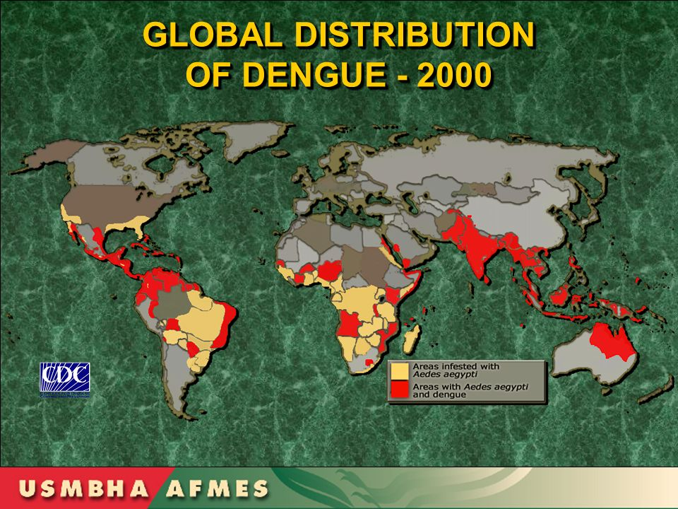 GLOBAL DISTRIBUTION OF DENGUE - 2000 GLOBAL DISTRIBUTION OF DENGUE - 2000