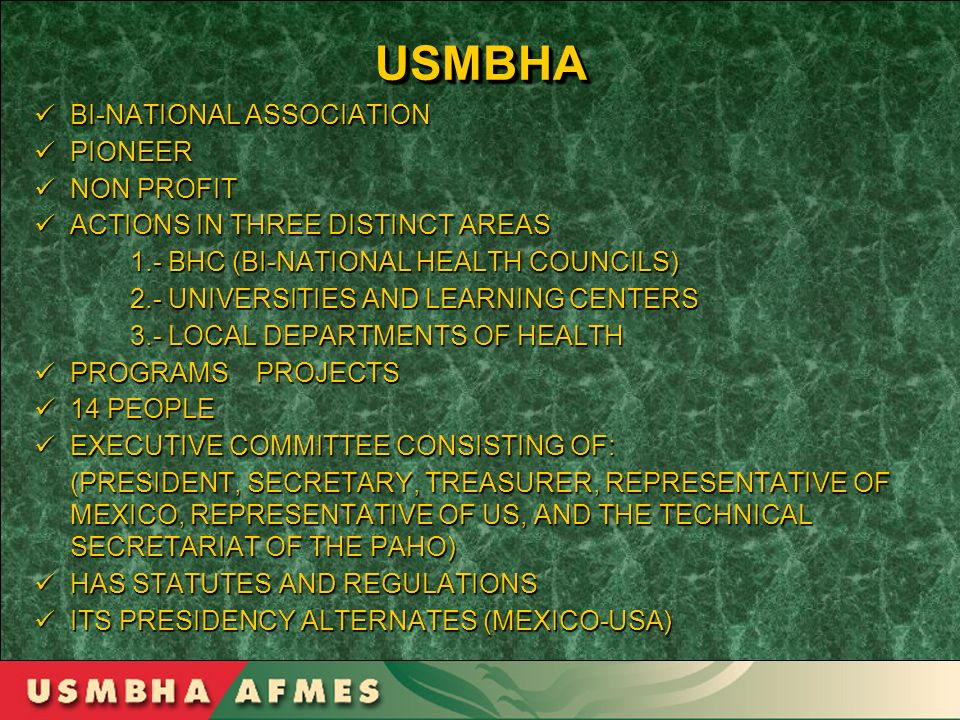 USMBHAUSMBHA BI-NATIONAL ASSOCIATION BI-NATIONAL ASSOCIATION PIONEER PIONEER NON PROFIT NON PROFIT ACTIONS IN THREE DISTINCT AREAS ACTIONS IN THREE DI
