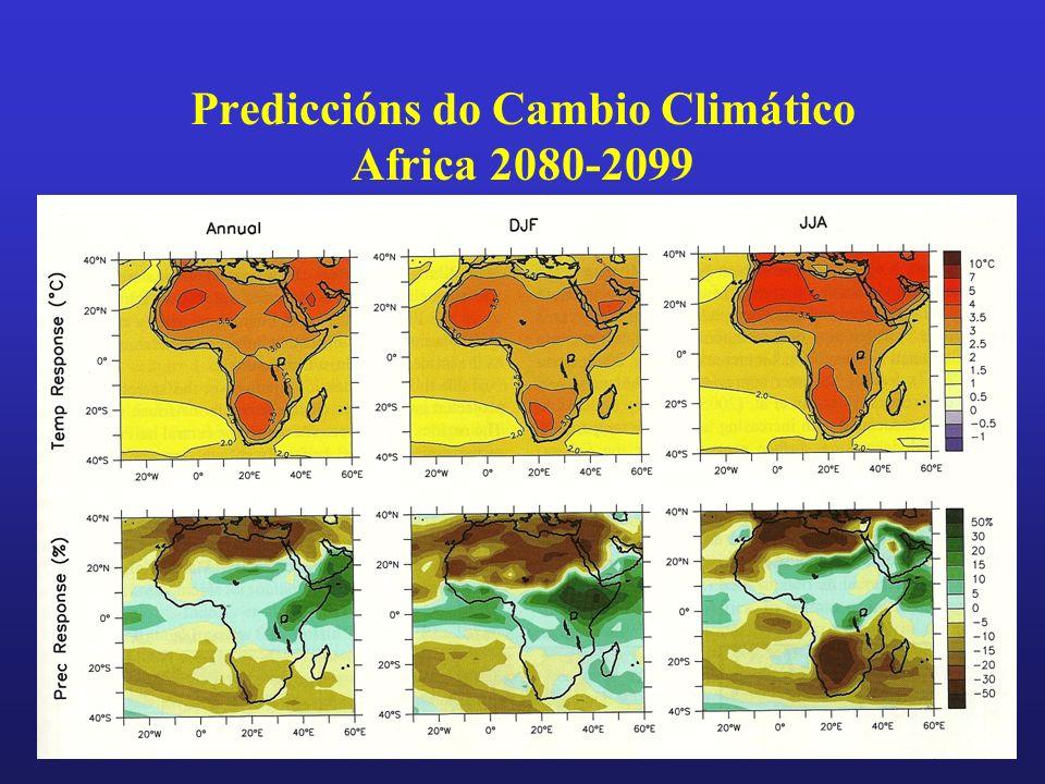 Prediccións do Cambio Climático Africa 2080-2099