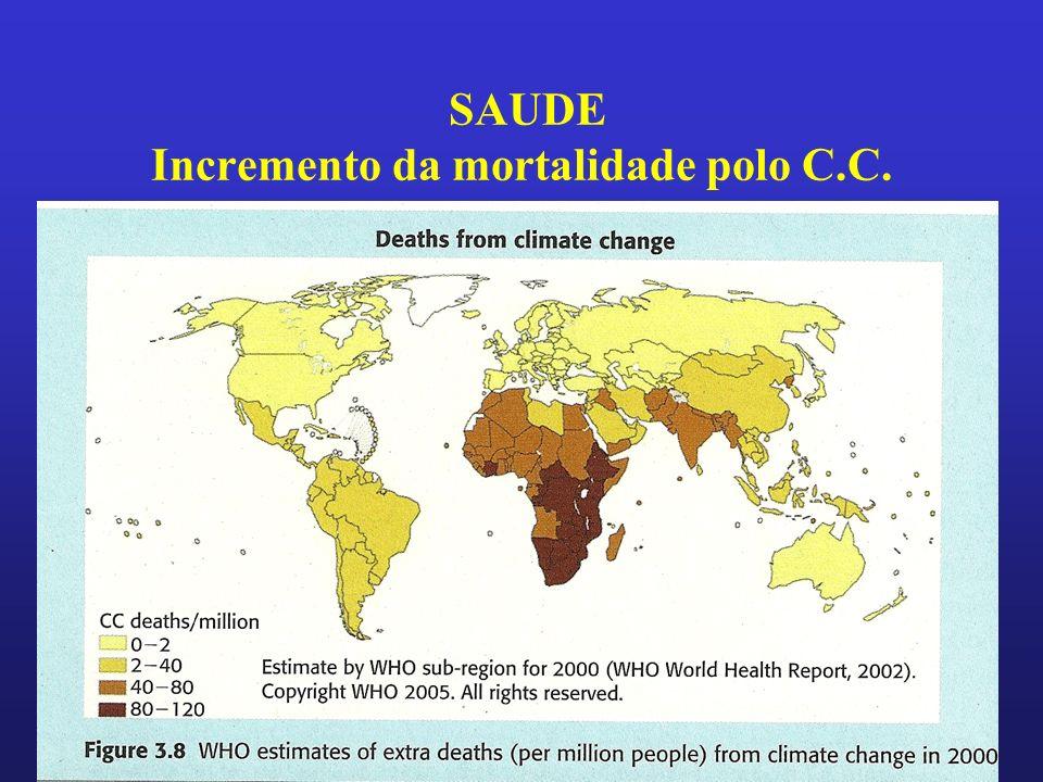 SAUDE Incremento da mortalidade polo C.C.