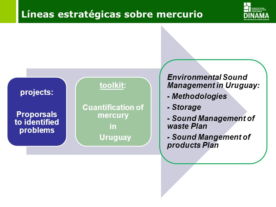 Líneas estratégicas sobre mercurio projects: Proporsals to identified problems toolkit: Cuantification of mercury in Uruguay Environmental Sound Management in Uruguay: - Methodologies - Storage - Sound Management of waste Plan - Sound Mangement of products Plan