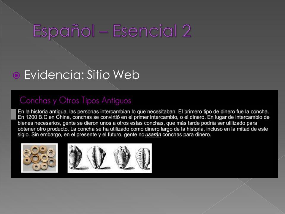 Evidencia: Sitio Web