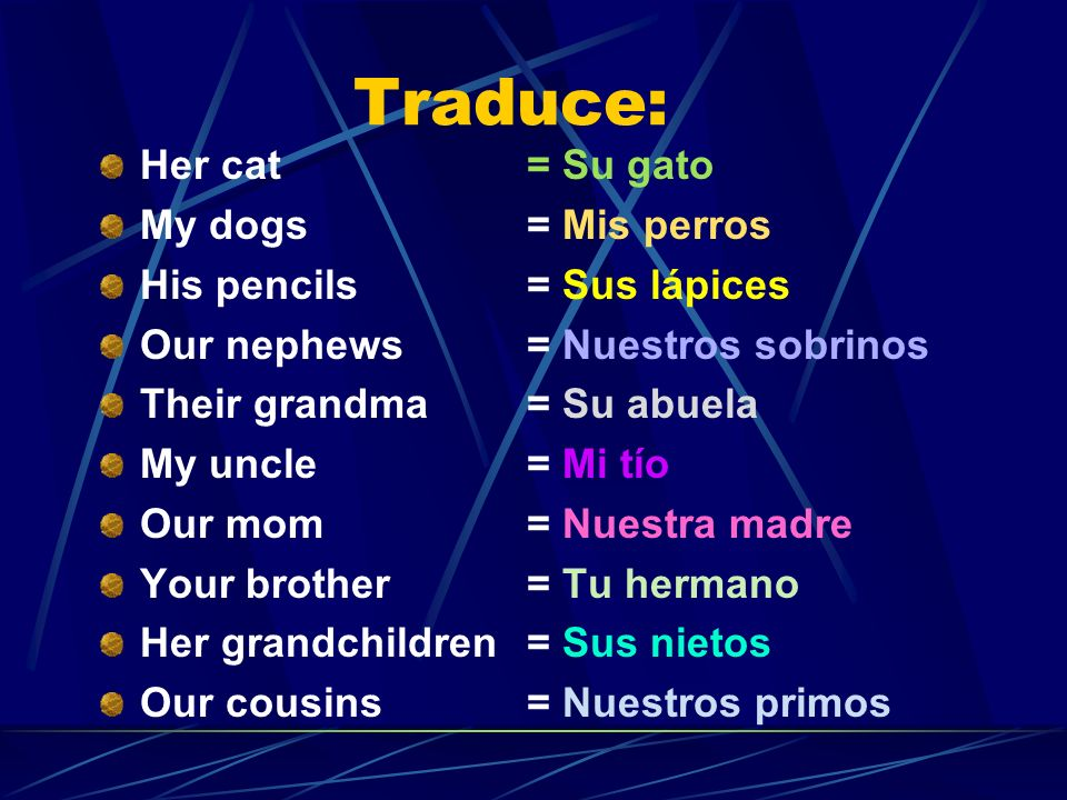 Traduce: Her cat My dogs His pencils Our nephews Their grandma My uncle Our mom Your brother Her grandchildren Our cousins