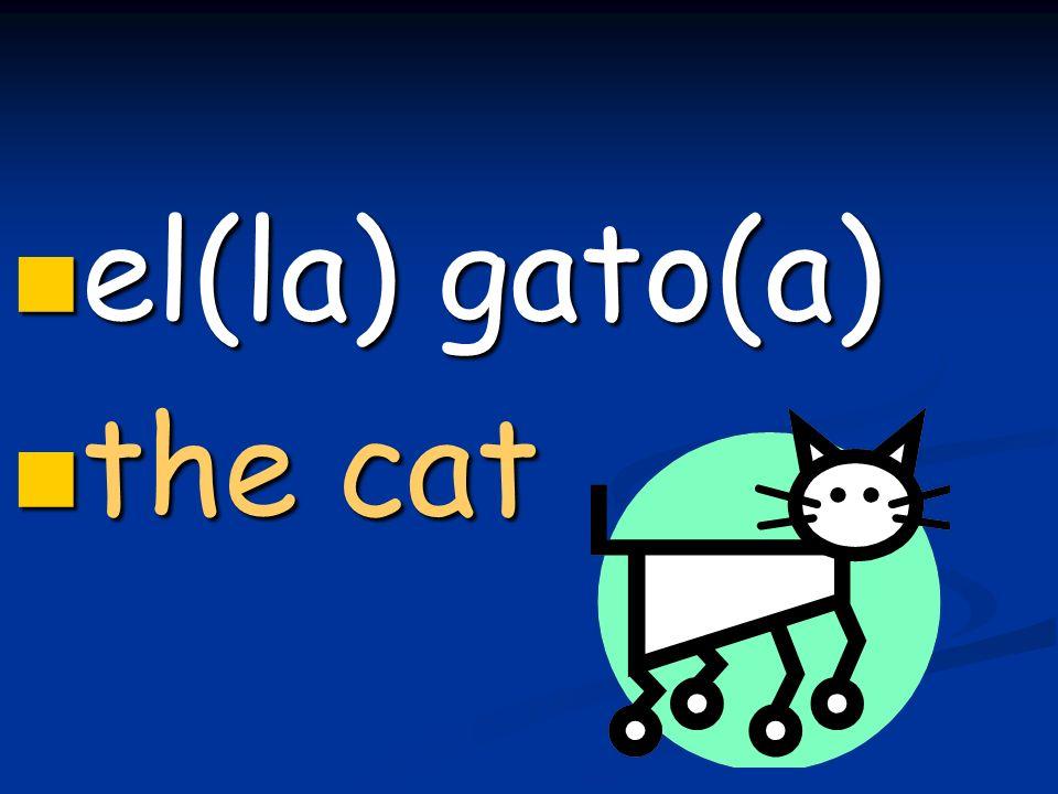 el(la) gato(a) el(la) gato(a) the cat the cat