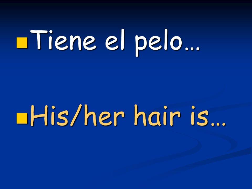 Tiene el pelo… Tiene el pelo… His/her hair is… His/her hair is…