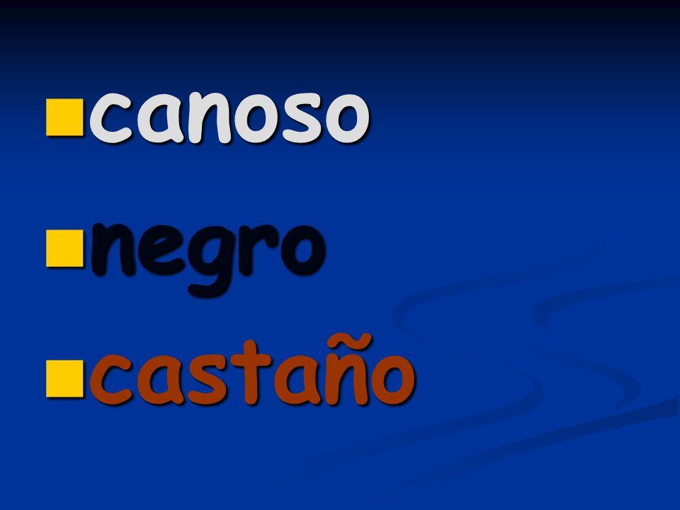 canoso canoso negro negro castaño castaño