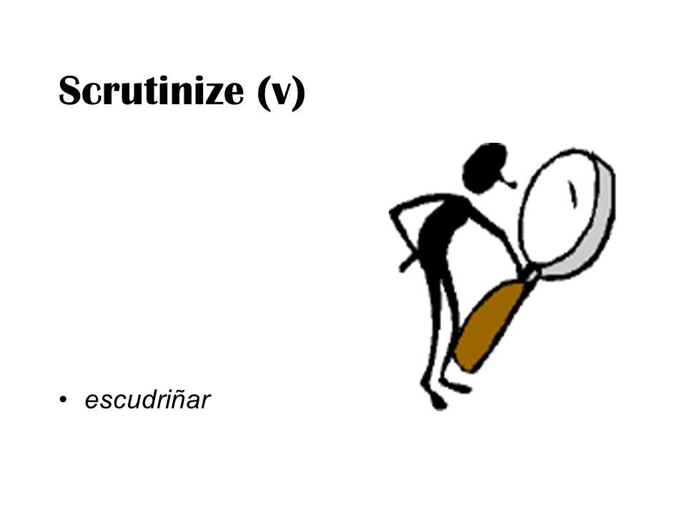 Scrutinize (v) escudriñar