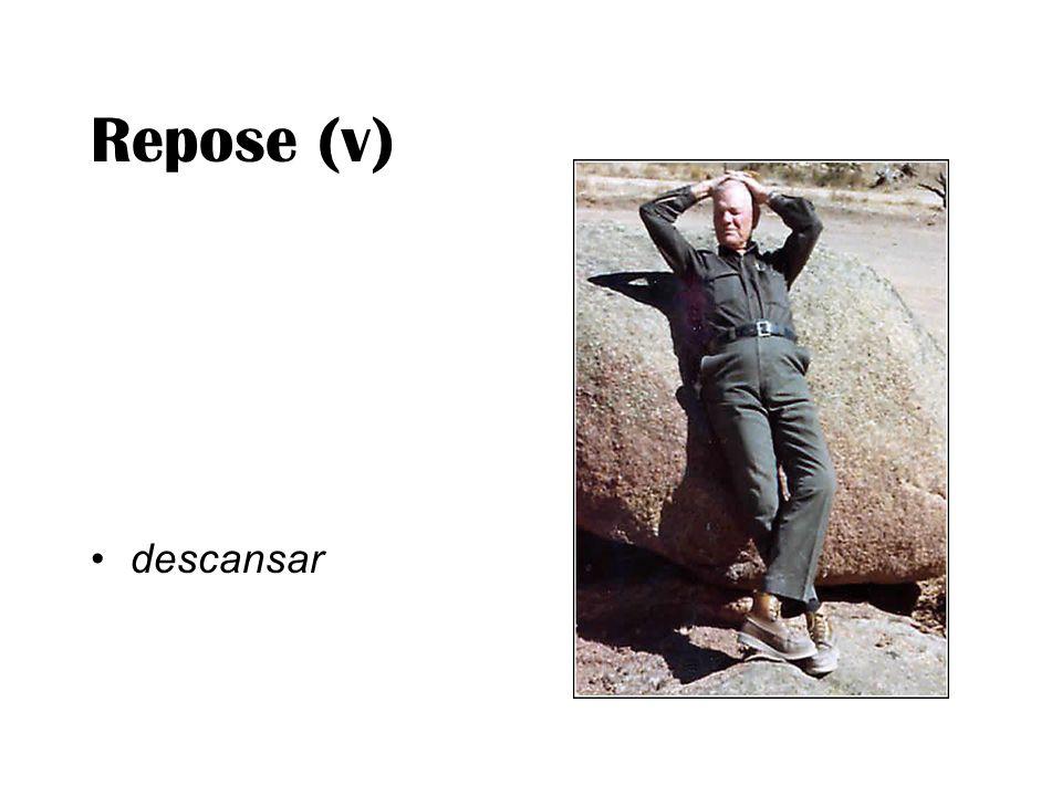 Repose (v) descansar