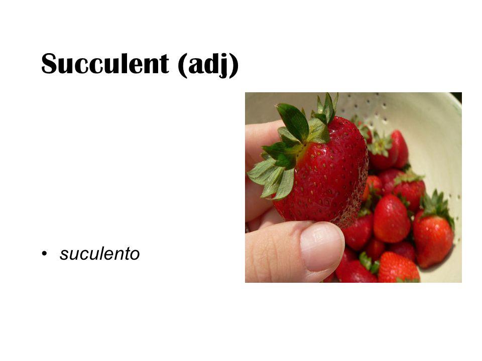 Succulent (adj) suculento