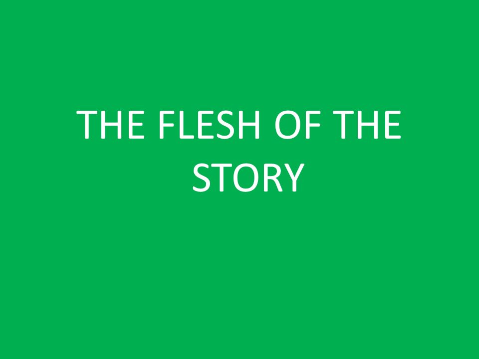 THE FLESH OF THE STORY