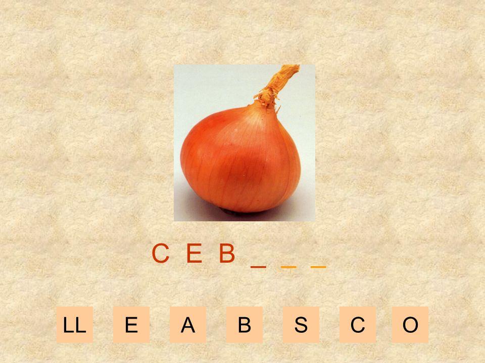 LLEABSCZ C E _ _ _ _