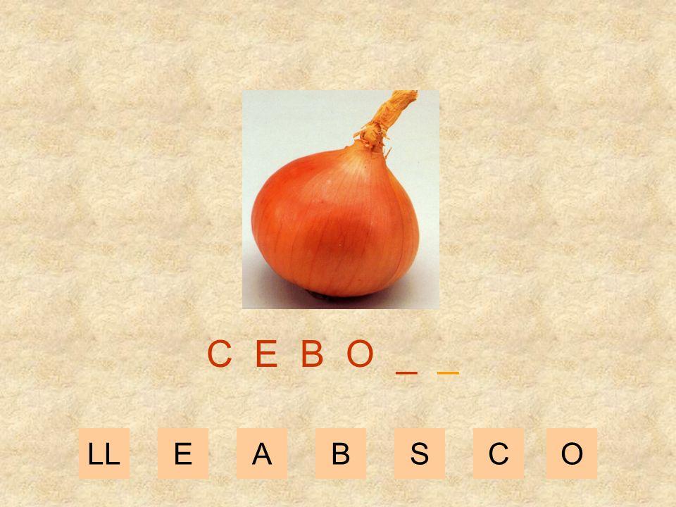 LLEABSCO C E B _ _ _