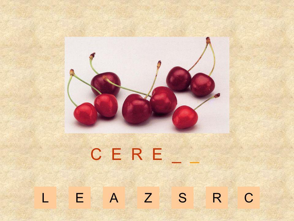LEAZSRC C E R _ _ _
