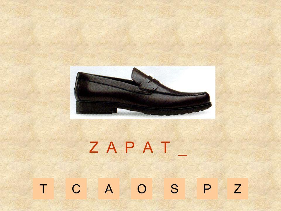 TCAOSPZ Z A P A _ _
