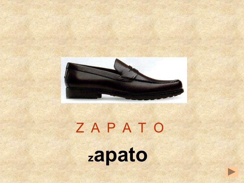 TCAOSPZ Z A P A T _