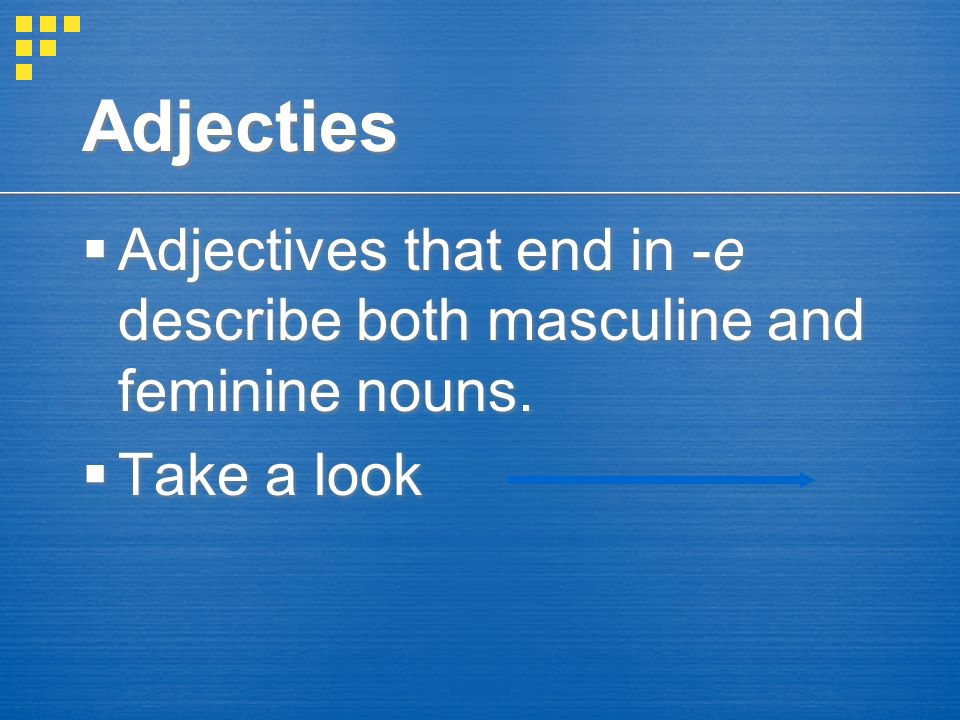 Adjecties Adjectives that end in -e describe both masculine and feminine nouns.