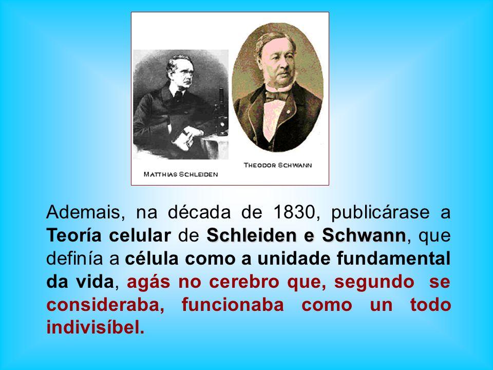 Schleiden e Schwann Ademais, na década de 1830, publicárase a Teoría celular de Schleiden e Schwann, que definía a célula como a unidade fundamental d