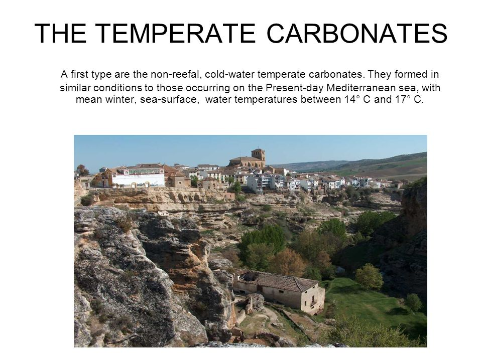 THE TEMPERATE CARBONATES A first type are the non-reefal, cold-water temperate carbonates. They formed in similar conditions to those occurring on the