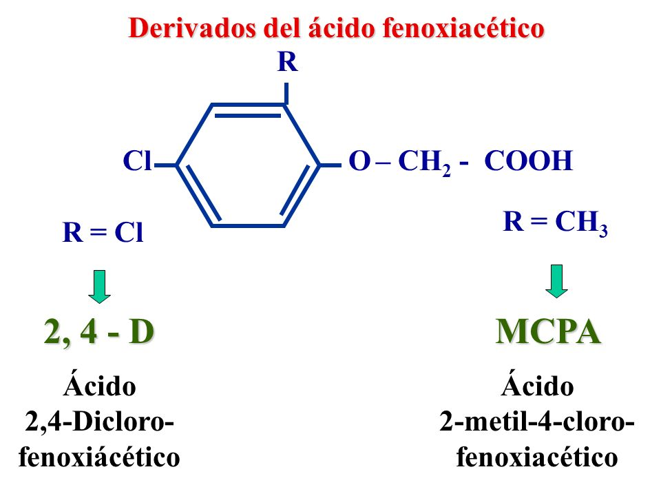 Derivados del ácido fenoxiacético Dichlorprop Mecoprop O – CH - COOH R Cl R = Cl R = CH 3 CH 3 Ácido 2-(2,4-dicloro-fenoxi)- propiónico Ácido 2-(2-metil-4-cloro-fenoxi)- propiónico