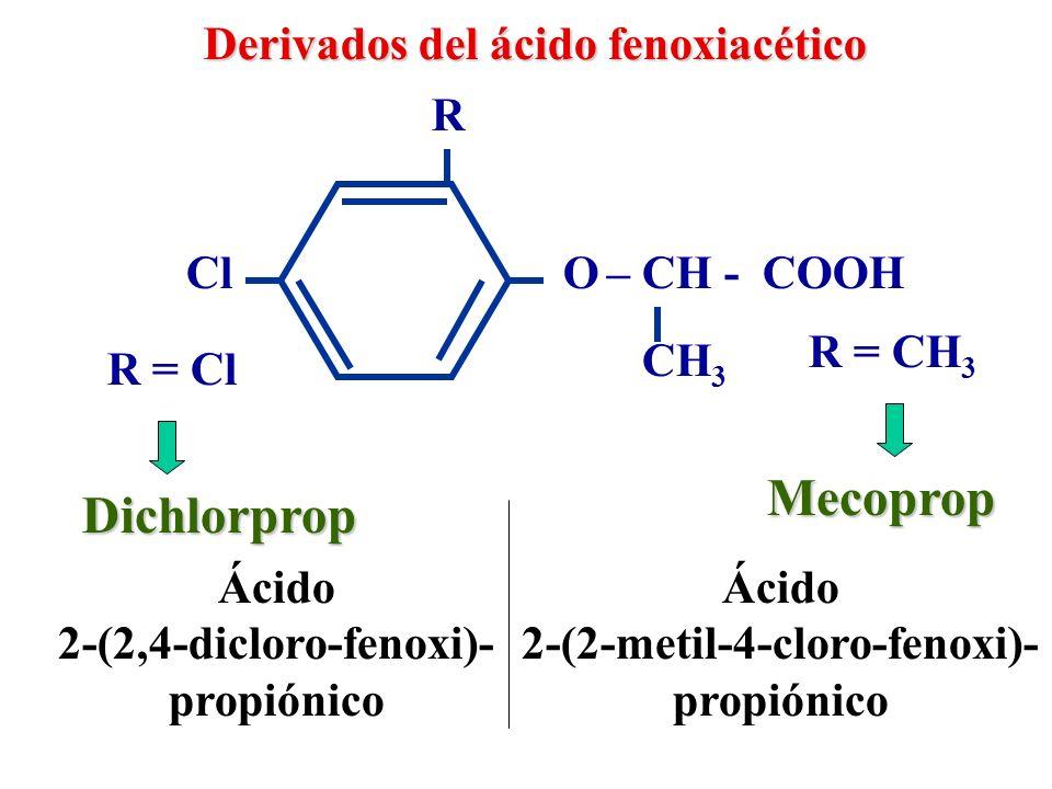 Derivados del ácido fenoxiacético 2, 4, 5 - T Fenoprop O – CH - COOH Cl R = H R = CH 3 Cl R Ácido 2,4,5- triclorofenoxi acético Ácido 2(2,4,5-tricloro- fenoxi) propiónico