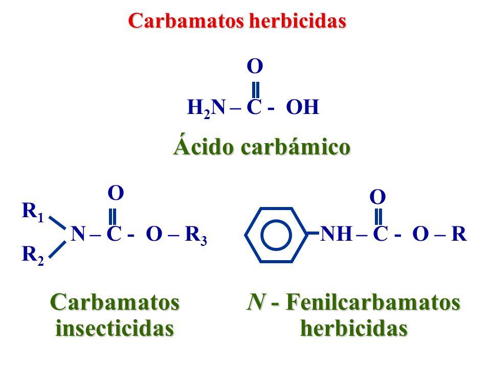 Tiocarbamatos y ditiocarbamatos herbicidas Ácido tiocarbámico H 2 N – C - SH N – C - S – R 3 O R1R1 R2R2 TiocarbamatosDitiocarbamatos S R1R1 R2R2 O