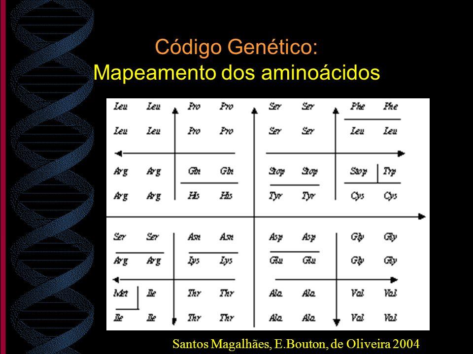 Código Genético: Mapeamento dos aminoácidos Santos Magalhães, E.Bouton, de Oliveira 2004