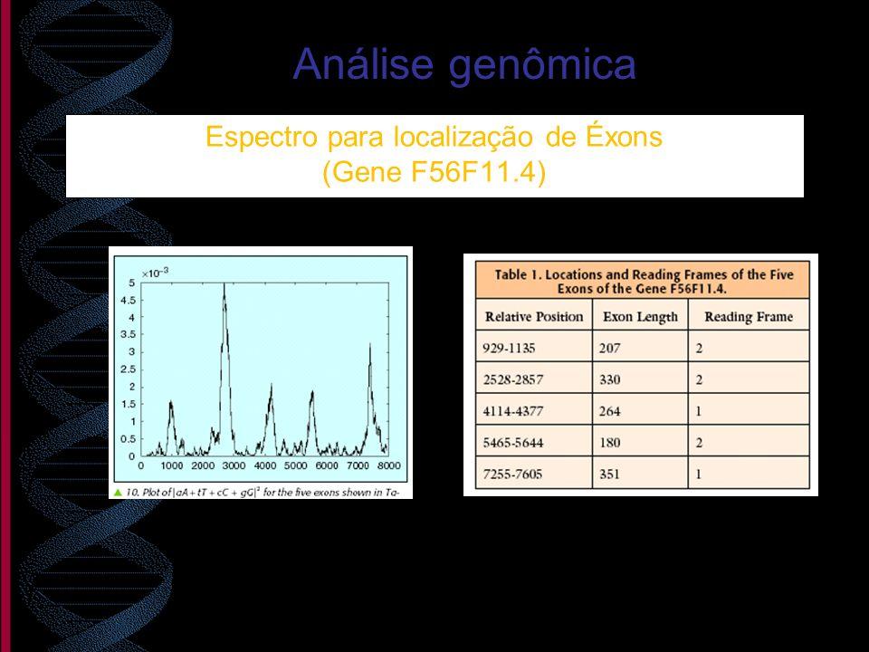 Espectro para localização de Éxons (Gene F56F11.4) Análise genômica