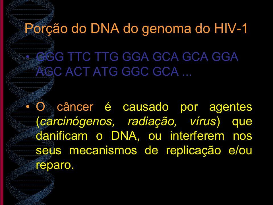 Porção do DNA do genoma do HIV-1 GGG TTC TTG GGA GCA GCA GGA AGC ACT ATG GGC GCA... O câncer é causado por agentes (carcinógenos, radiação, vírus) que