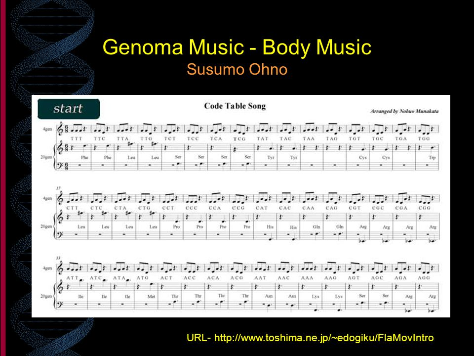 Genoma Music - Body Music Susumo Ohno URL- http://www.toshima.ne.jp/~edogiku/FlaMovIntro /