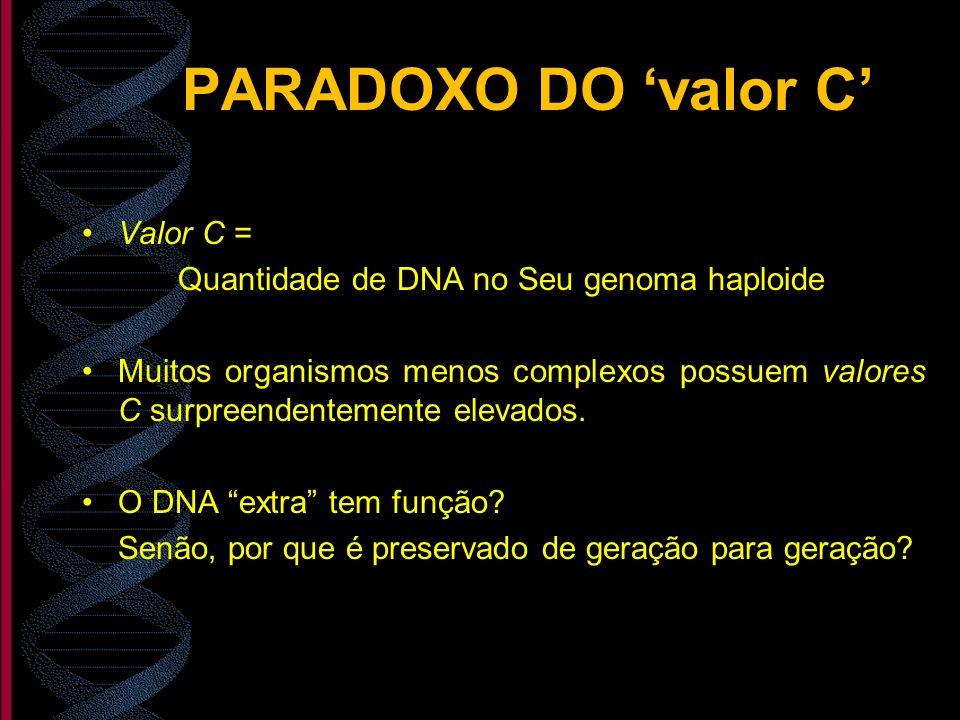 PARADOXO DO valor C Valor C = Quantidade de DNA no Seu genoma haploide Muitos organismos menos complexos possuem valores C surpreendentemente elevados