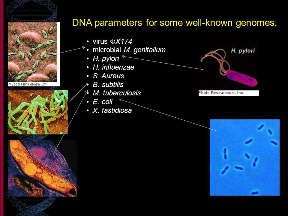 DNA parameters for some well-known genomes, virus X174 microbial M. genitalium H. pylori H. influenzae S. Aureus B. subtilis M. tuberculosis E. coli X
